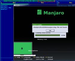 Manjaro Other: Проблема с установкой Manjaro с USB флэшки