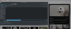 Уголок новичка: После переустановки браузера с использованием варианта AUR